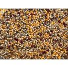 Beyers Select Gold ohne Weizen Palette (40x 25kg) frachtfrei innerhalb Deutschlands +Mausersamen gratis!